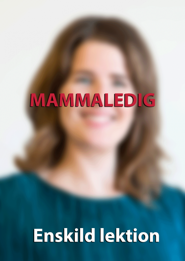 Malin Frank Mammaledig